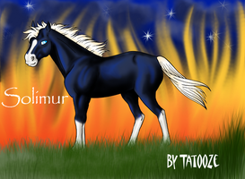 Solimur le poney de feu by Xx-tatooz-xX