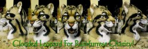 Clouded Leopard head for 2013 Rainfurrest Charity by Crystumes