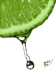 Lime Study by 2BeanSoup