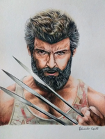 Logan - Hugh Jackman (Drawing) by EduardoCopati