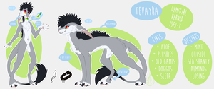 Tevayra's Reference Sheet 2017 by Tevayra