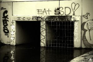Eat LSD by PhillyPuddy