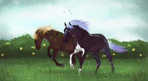 The Stallions by Minthiy