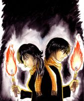 Torches by black3