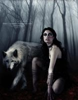 The Curse of the She-Wolf by SonnyCat