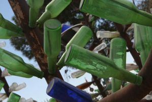 Bottle Tree by viewsionone