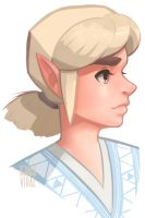 Link by veeleon