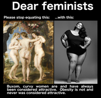 Dear feminists by Phracker
