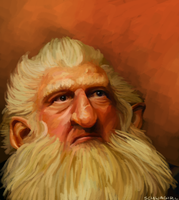 Balin by SchwaGirl