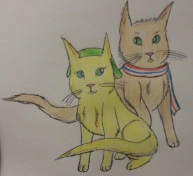 Neko: Netherlands and Belgium by panthereye24