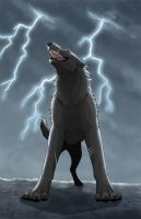 In The Storm by Kuuda