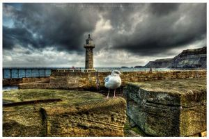 Dynamic Whitby Harbour by GaryTaffinder