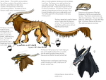 Daarow Species Ref Sheet by lover-of-the-Drow