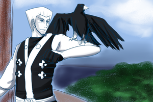Ninjago: Zane and Falcon by witch-girl-pilar