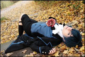 BB: reve d'automne by Magoro