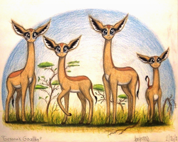 Gerenuk Gazing by TheFriendlyElephant