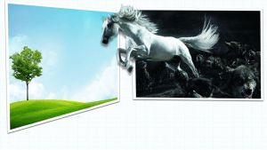 Horse and Wolves Out of bounds PSD by wsaconato