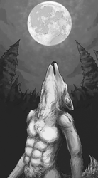The Moon by Drkchaos