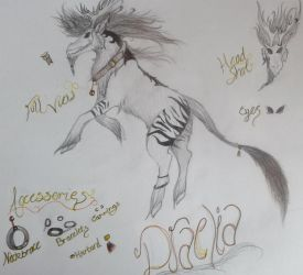 Draelia- Character Reference by SpiritWolf100