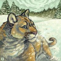 Cougar in Snow by thornwolf