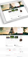 Airlines Booking Flights Web Design - For Sale by vasiligfx