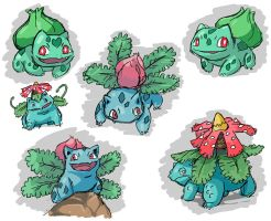 The Bulbasaur Family