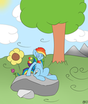 Peacefull day by M4ng0s