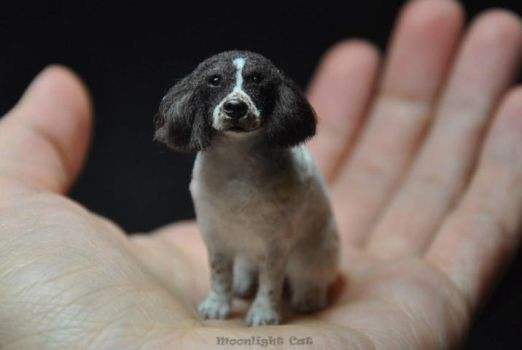 Miniature spaniel by MoonlightCatHandmade