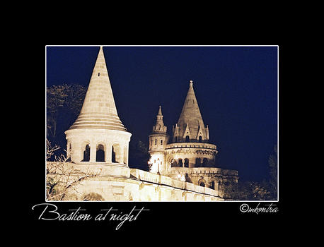The Bastion, at night by mags253