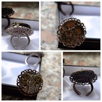 Steampunk rings by IllyDragonfly