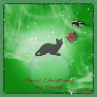 Merry Christmas my friend. by jennystokes