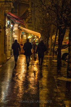 Night walk after the rain by rembo78