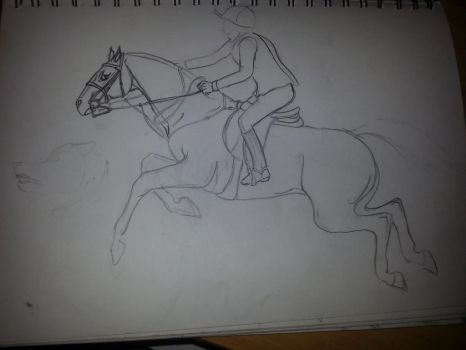 Horse Sketch by macdvl