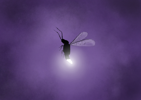 ThoughtART Drawing: Bug by danlev