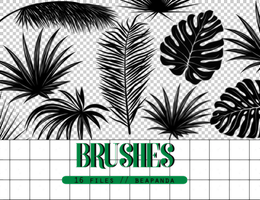 Brushes 008 // Tropical by BEAPANDA