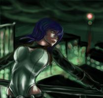 Ghost in the Shell: Finished by Raenstrife