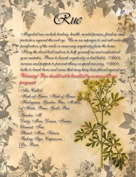 Book of Shadows: Herb Grimoire - Rue by CoNiGMa
