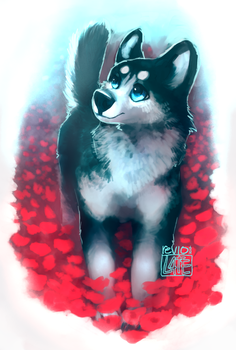 husky and red flowers yet again (+speedpaint) by revioLATE