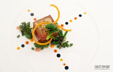 Australian Culinary Finals: Entree 1 by DulcetEpicure