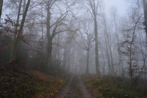 Misty Way to Secrets by ElConsigliere