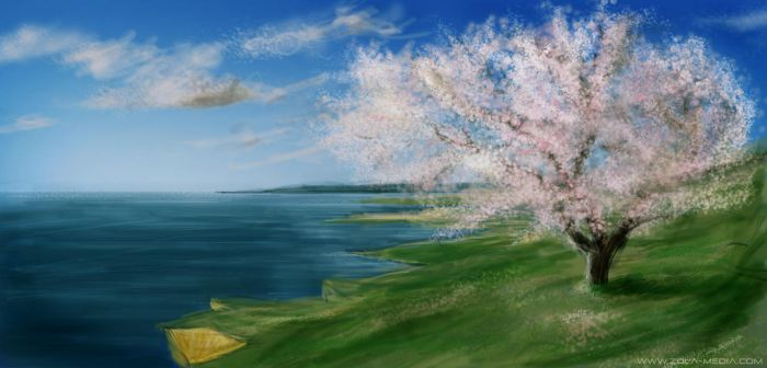 What the Cherry Blossom Saw by Zola85