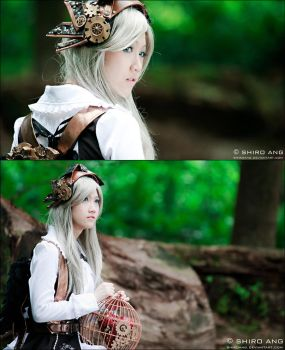 Alice In Steampunkland - 02 by shiroang