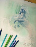 Hippocampus sketch by Michelle-Winer