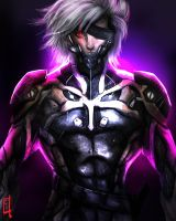 Raiden by omegarer