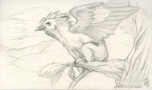Perched Mokeybirdgryph by kiohl
