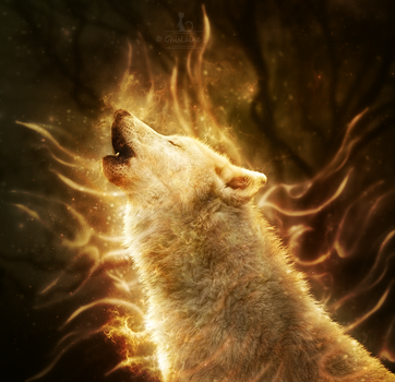 Wolfire by Ghislaine-L