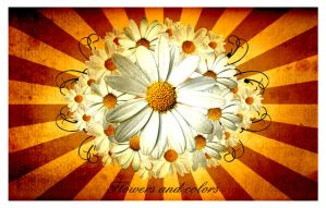 Flowers and colors serie 02 by villanitadesign