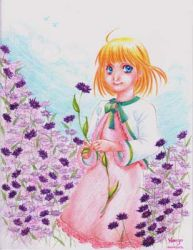Purple spring by manzo