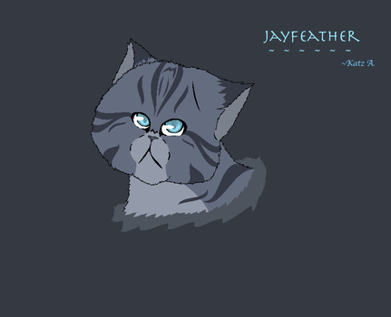 Jayfeather- New Style by ShadowKitKat11