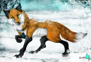 C: After Snow by Snow-Body